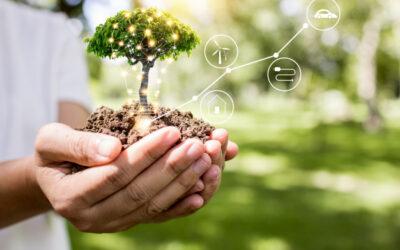 L'importanza delle fonti di energie rinnovabili: la loro efficienza